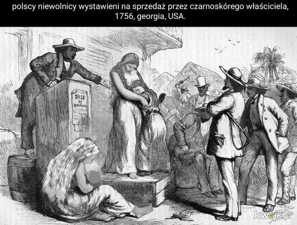 Polscy prawacy są po to, żeby służyć czarnemu panu.