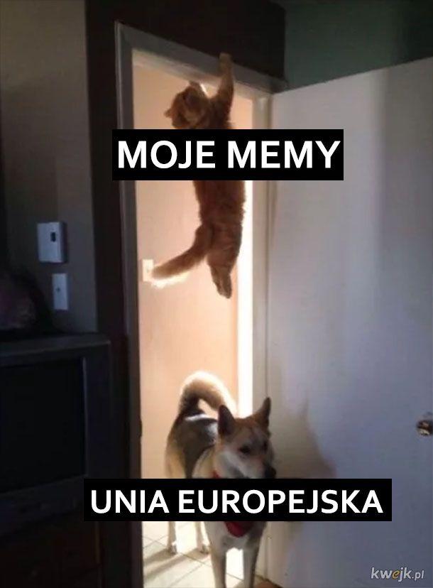 Moje memy