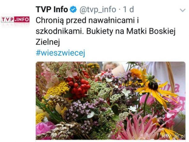 Tymczasem w TVP