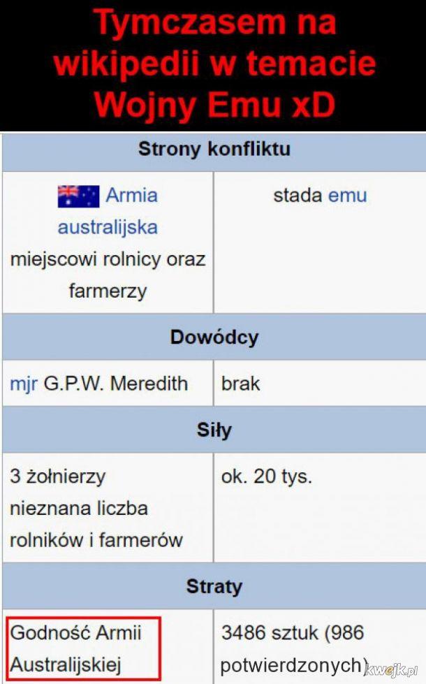 Tymczasem na wiki
