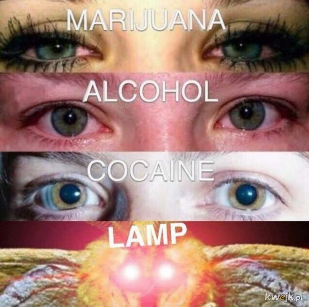 Bracie gdzie moja lampa