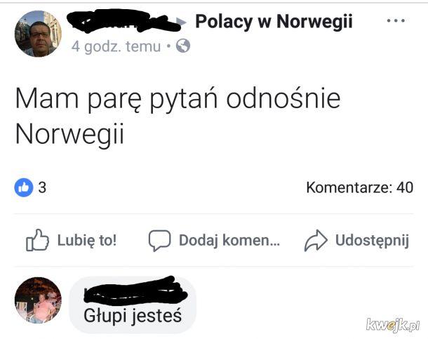 Polak Polakowi Polakiem xD