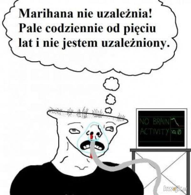 Marihuana nie uzależnia
