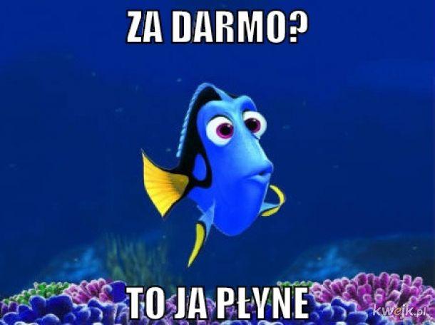 Darmówka