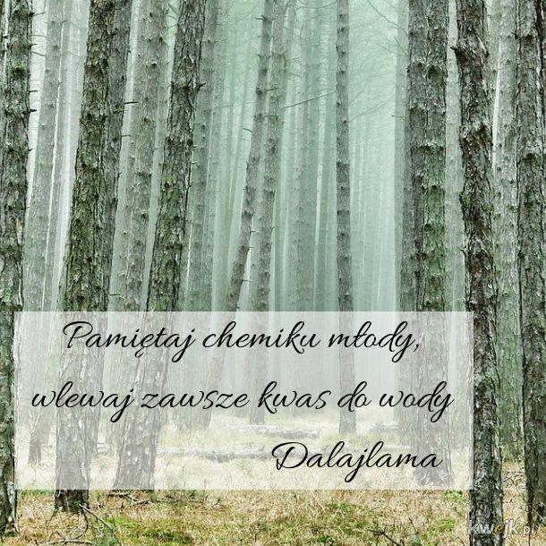 Znany cytat Dalajlamy