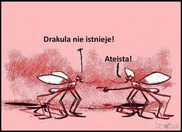 Ateiści wśród komarów