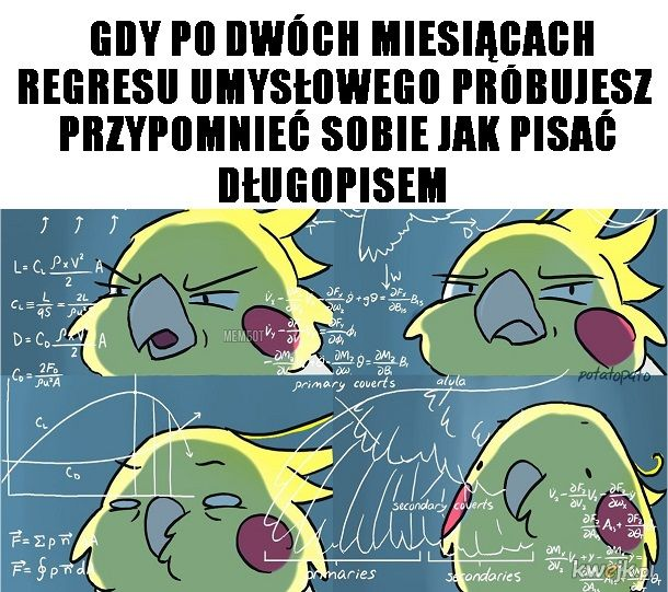 jak to bylo