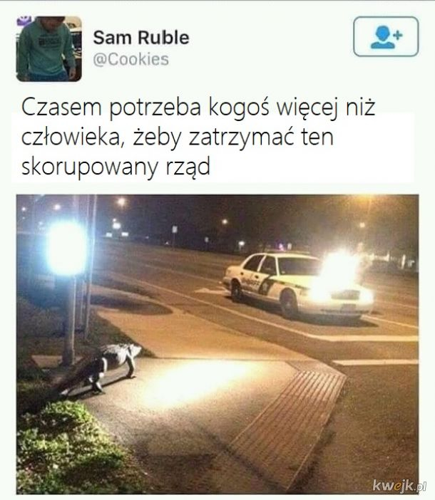 Nasz nowy superbohater