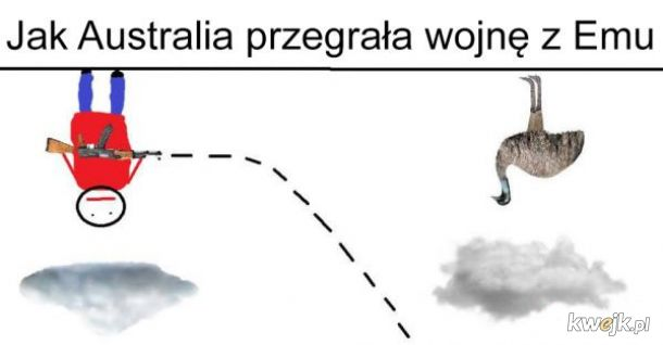 Australia vs Emu