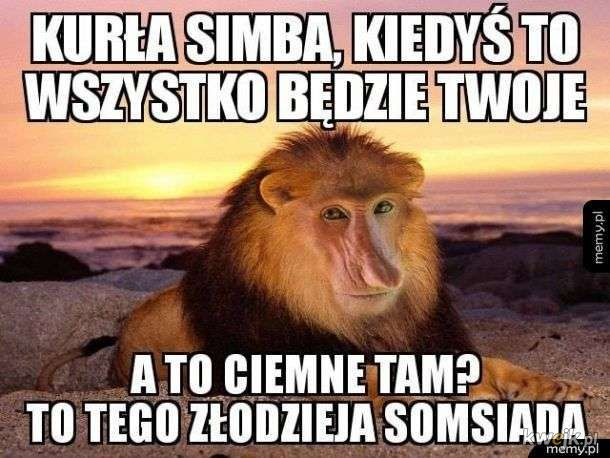 Kuuuurła Simba