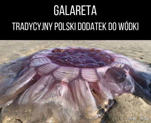 Galareta