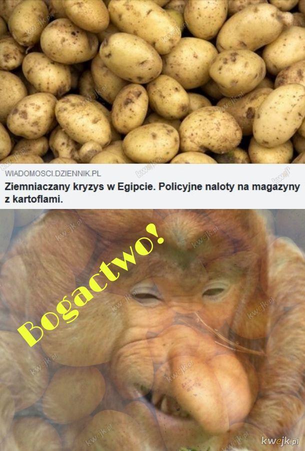 Cebuliony za ziemniaki
