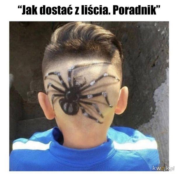 Super pomysł na halloweenową fryzurę