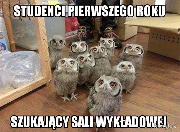 Studenci pierwszego roku xD
