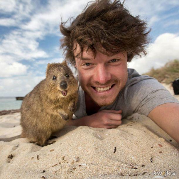 Najlepsze selfie ze zwierzętami