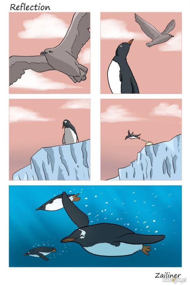 Biedny pingwin