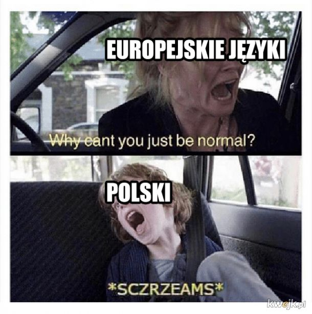 Polski trudna język