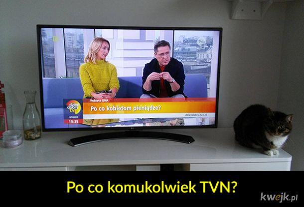 Ważne pytania w telewizji śniadaniowej