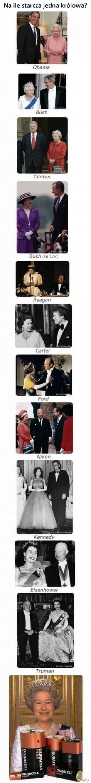 Królowe są bardzo wydajne