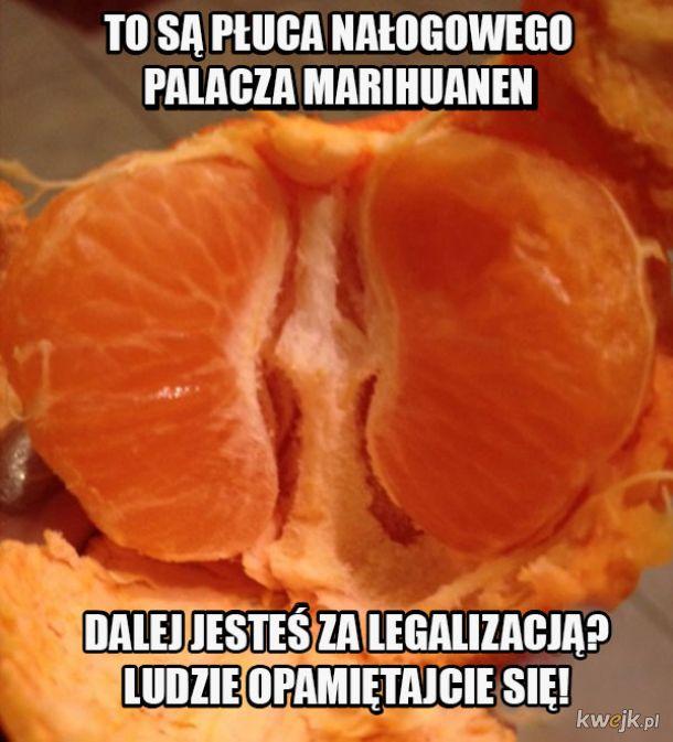 Niebezpieczna marihuanen