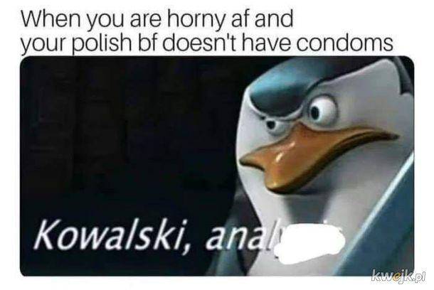 Kowalski, analysis
