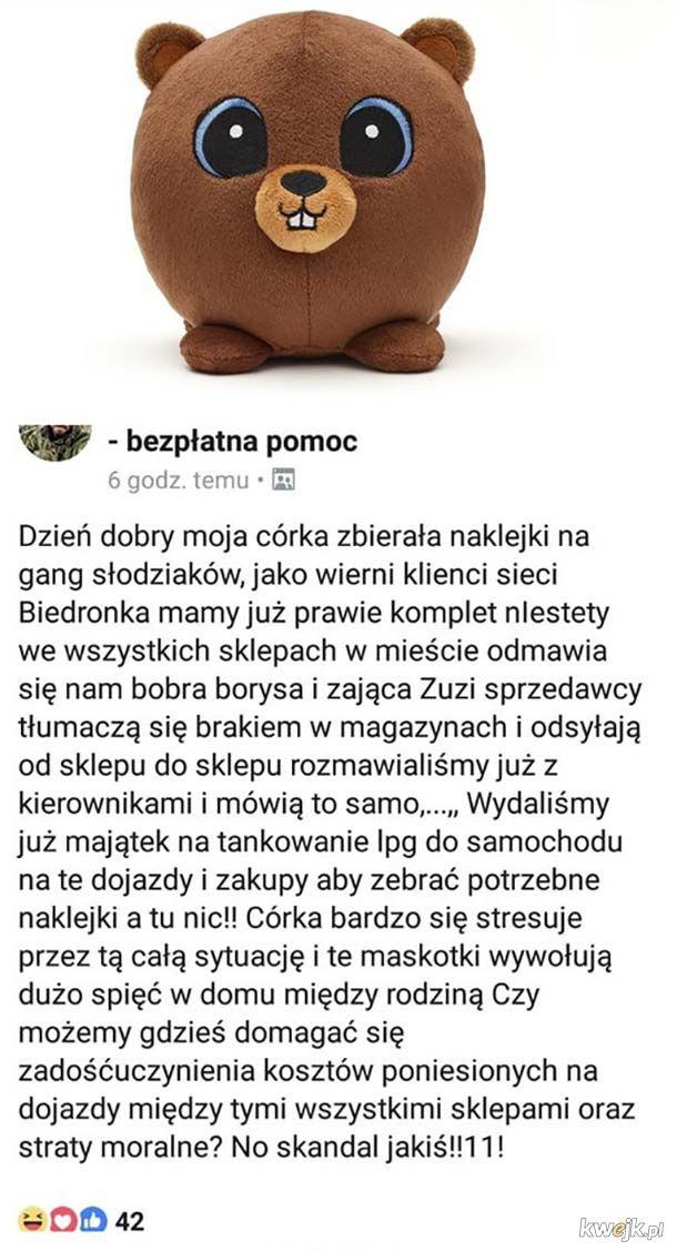 Afera o bobra Borysa