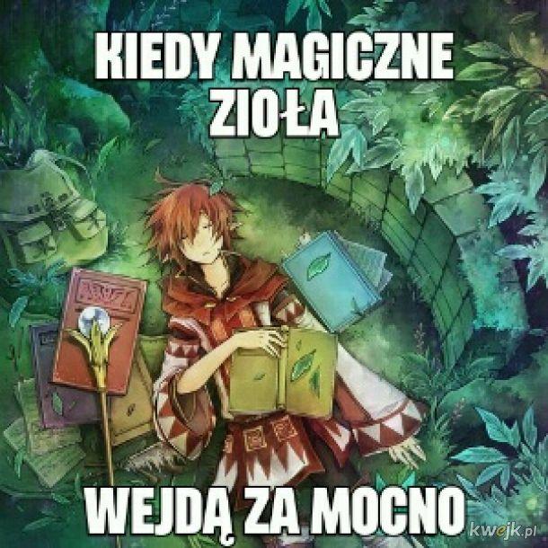 Magiczne zioła