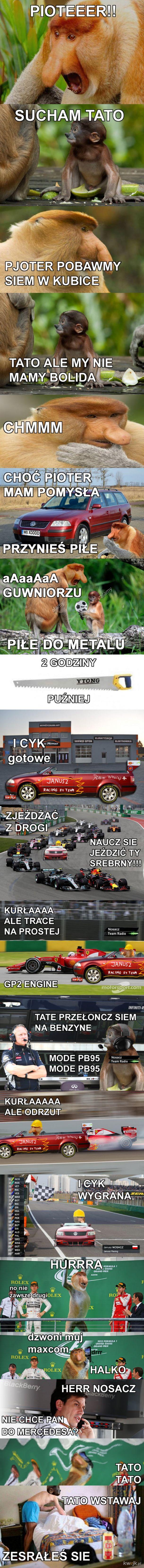 Janusz wyścigant