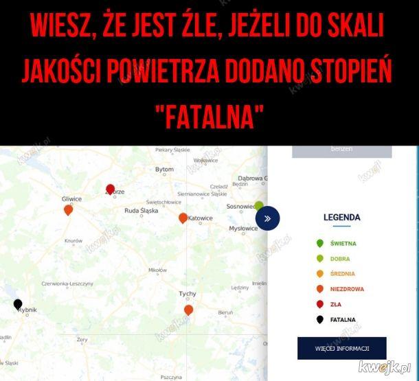 Polskie powietrze - bardzo dobre, jak się dokładnie pogryzie