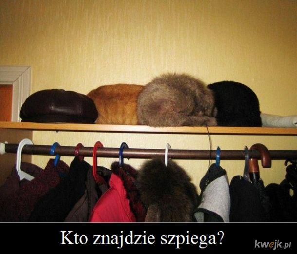 Zagadka:)