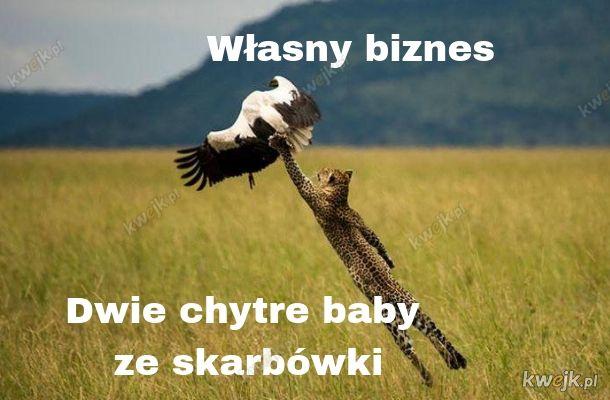 Państwo polskie wstało z kolan i się przewróciło