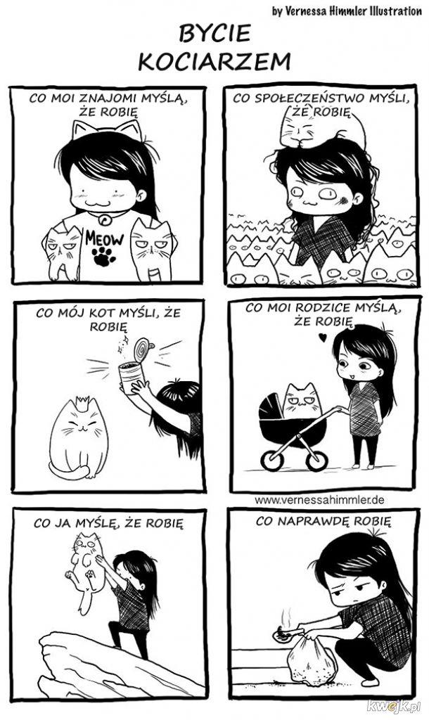 Komiksy o życiu z kotem