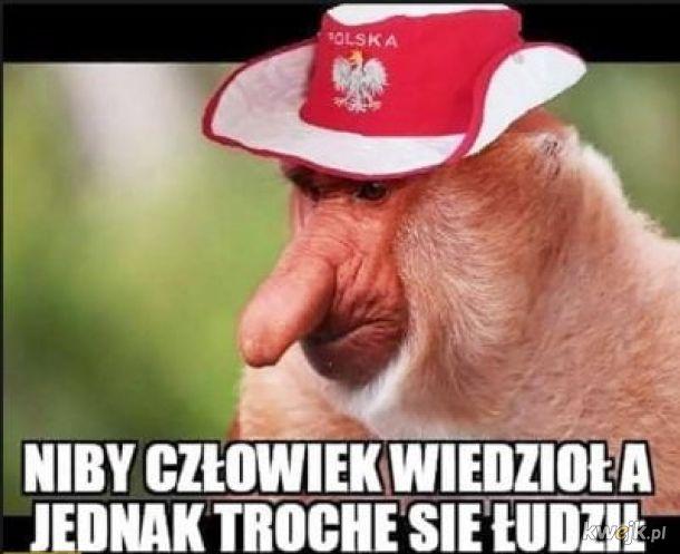 Polska vs Czechy - memy po meczu