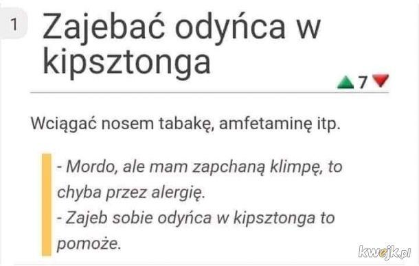 Mistrzowskie tłumaczenie