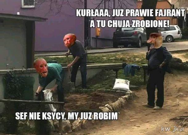 Memy z Saszką