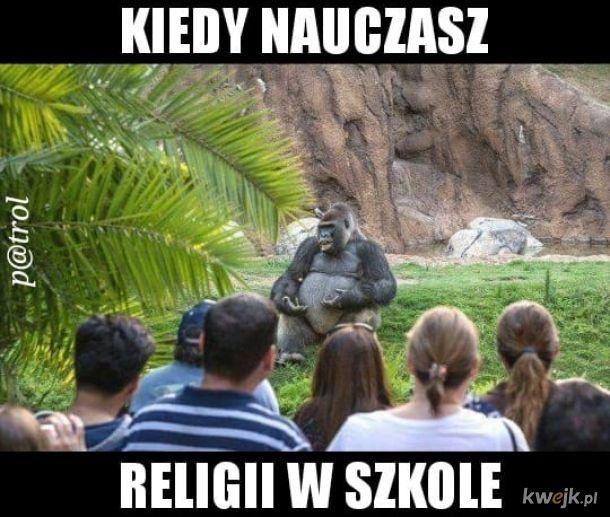 Małpie religie