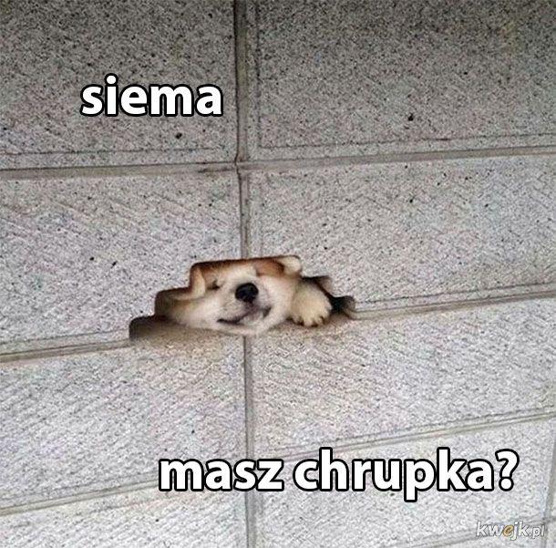 Siemanko