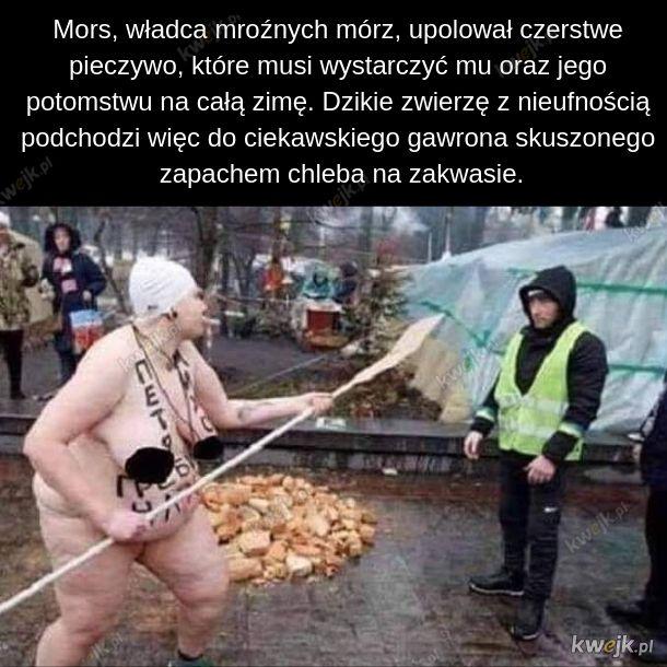 Czytała Krystyna Czubówna