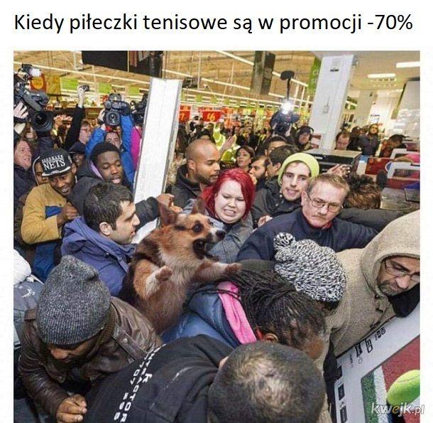 Zakupowe szaleństwo