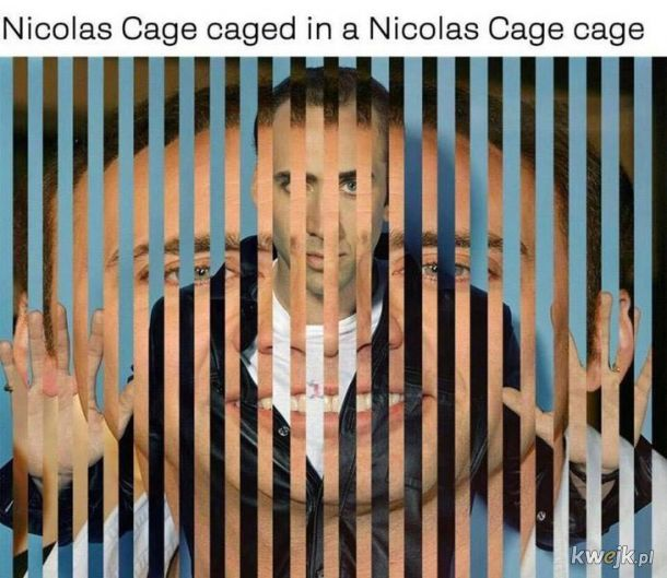 Cage in cage