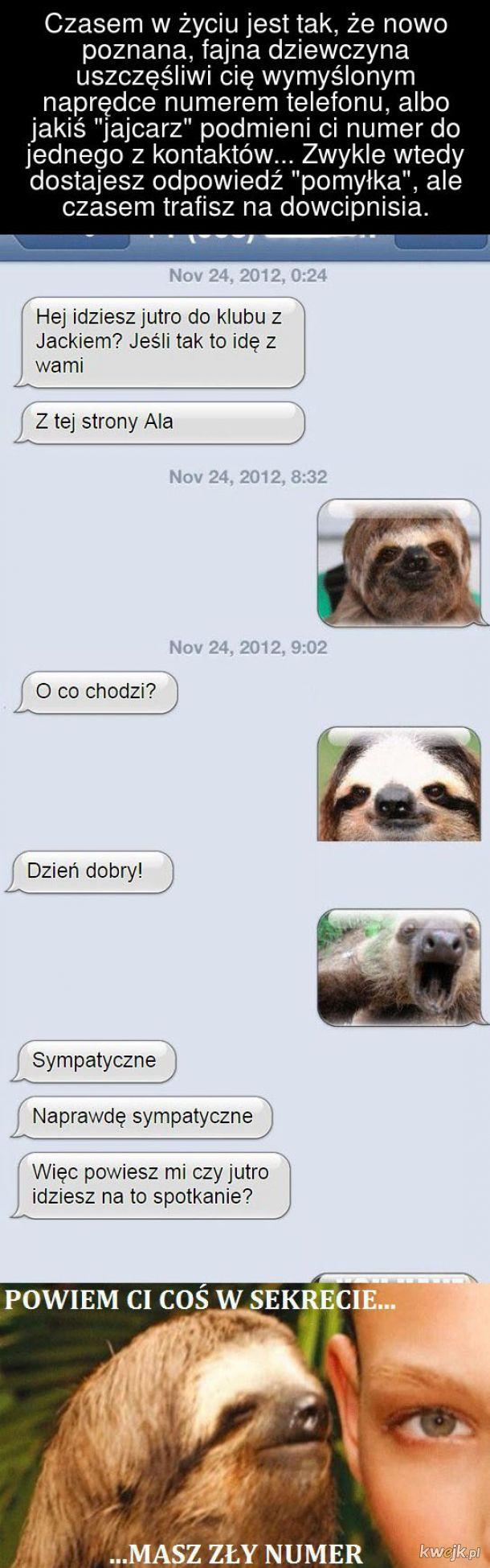 SMS-y wysłane pod zły numer