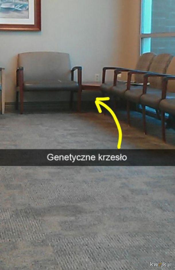 Wielka genetyka