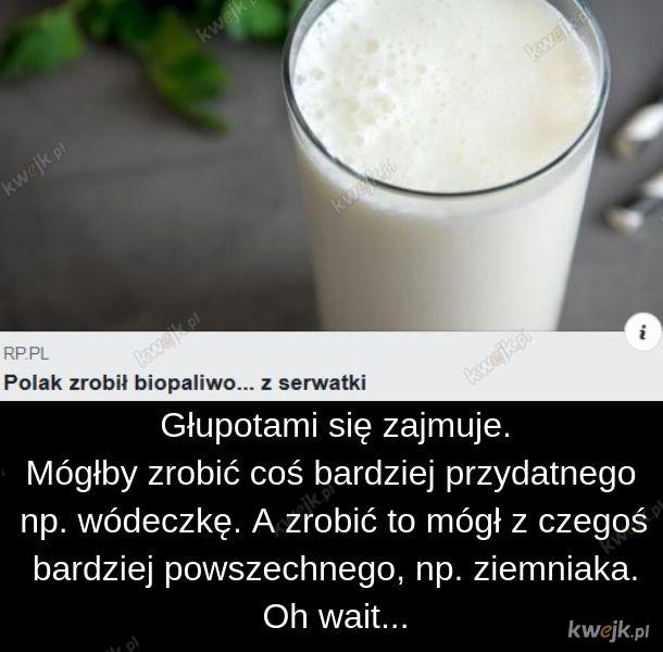 Serwatka