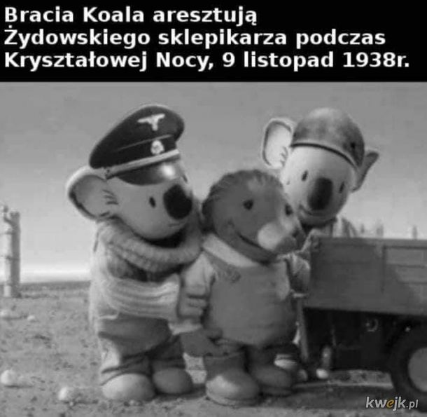 Bracia Koala III Reich Edition