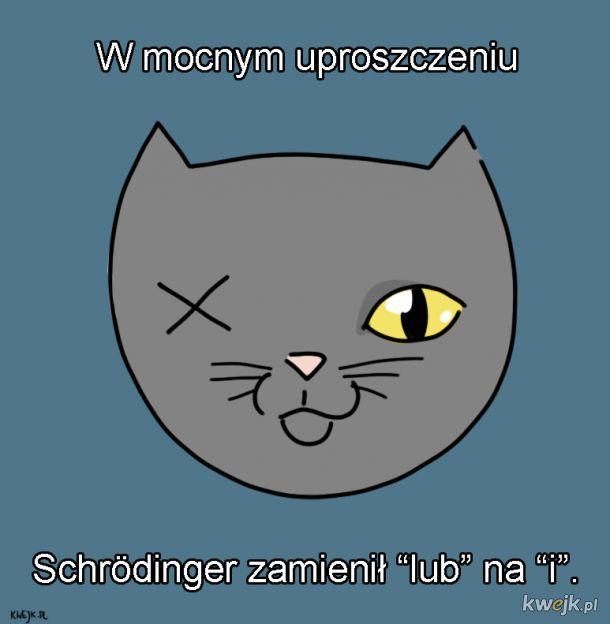 Kot Schrodingera