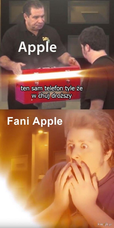 Typowy fan