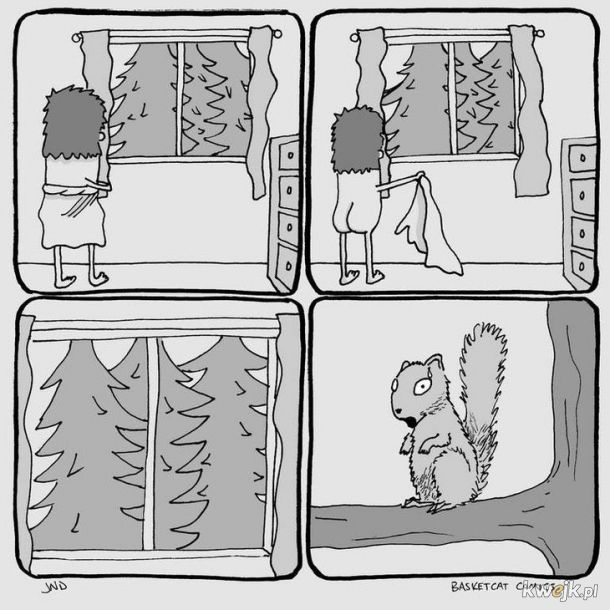 Biedna wiewiórka