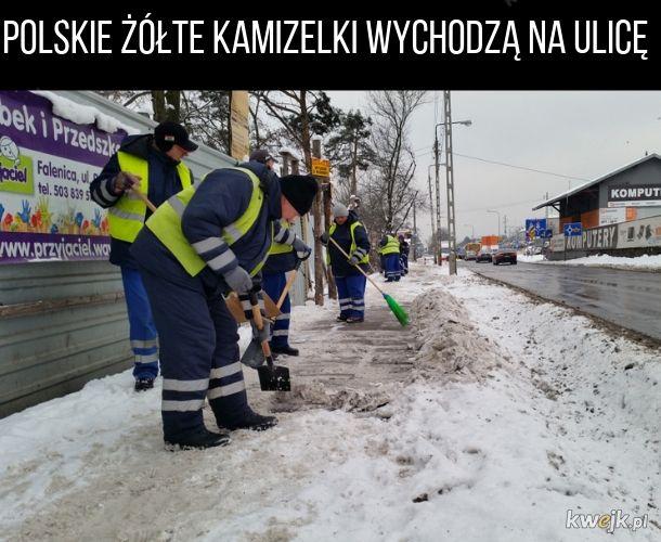 Polskie Żółte Kamizelki
