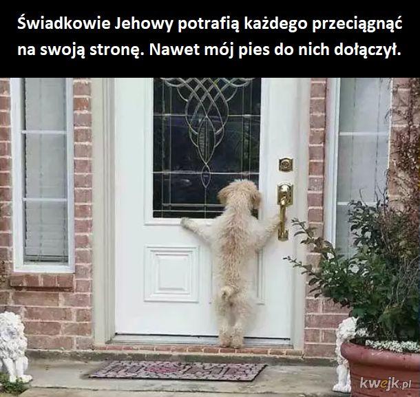 Pieseł Jehoweł