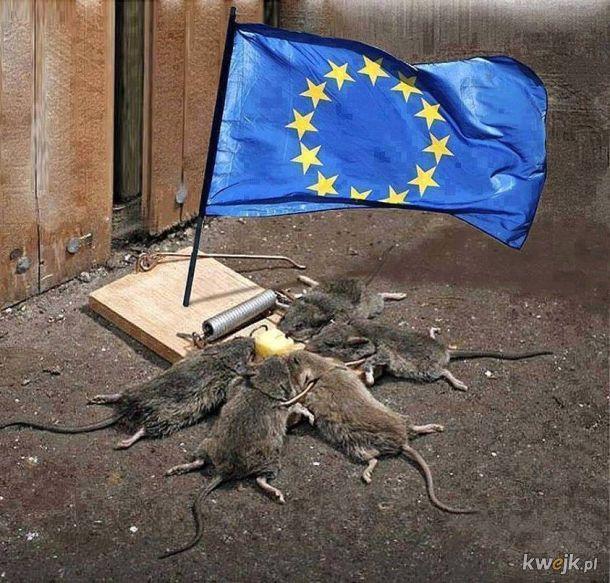 unia ewropejska....